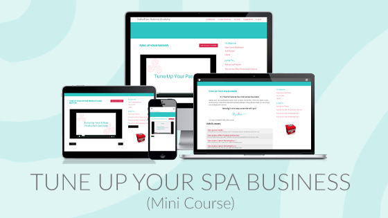 tune up your spa business esthetician mini course maxine drake
